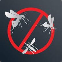 Lapače hmyzu